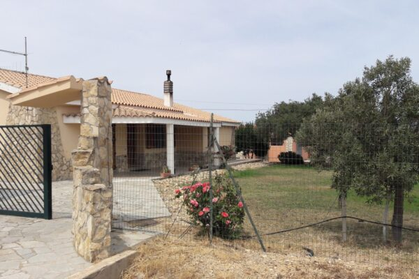 Olio San Tomas - Castiadas - Villasimius - Muravera